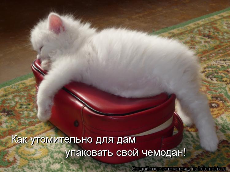 http://www.logoslovo.ru/media/pic_full/3/11472.jpg