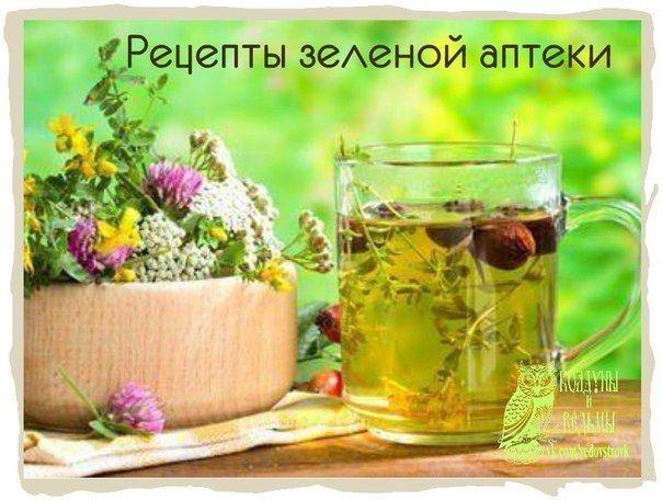 Лечение алкоголизма травами и лекарствами кодирование от алкоголизма норбеков