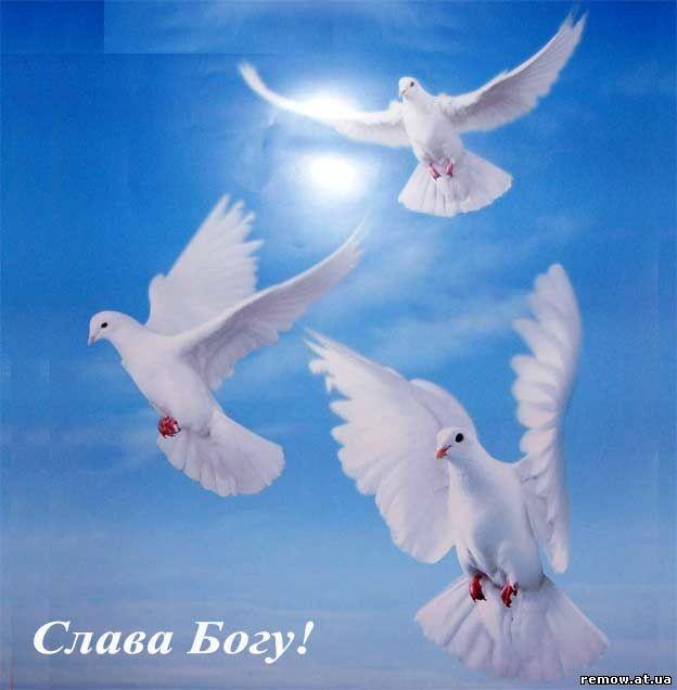 Свято-успенская почаевская лавра слава богу за все.